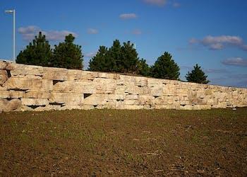 Story: Rosetta Wall Creates Sustainable Solutions