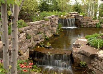 Project: Water Features